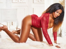 ebony escort on her hands and knees on bed